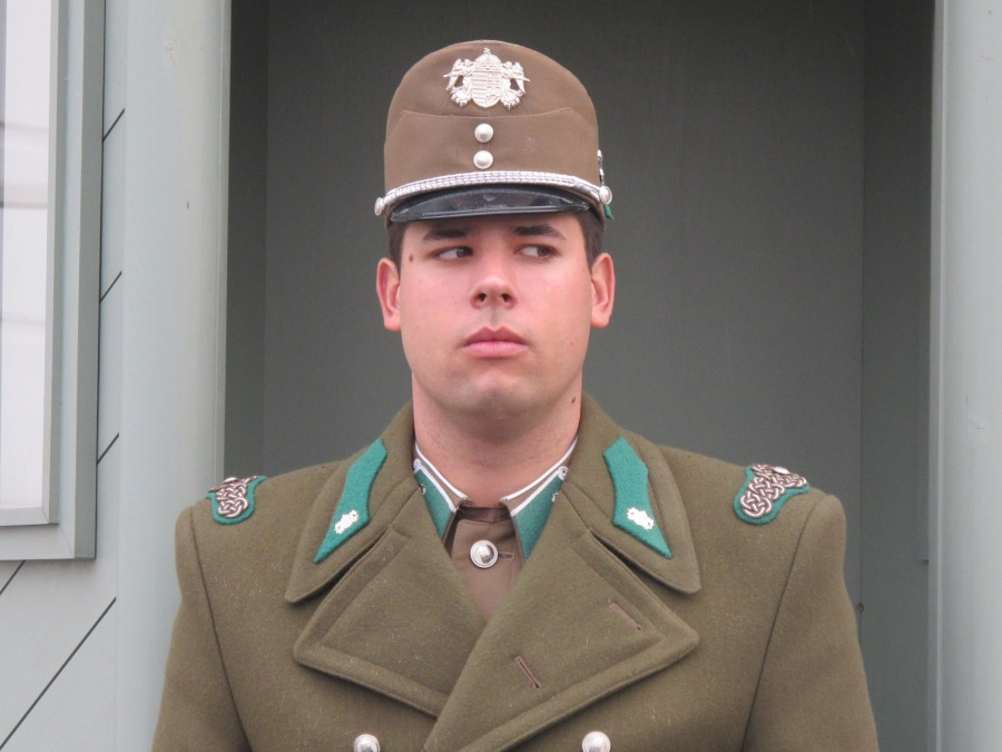 How would you like to have this guy's job guarding Buda Castle?