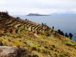 Titicaca9